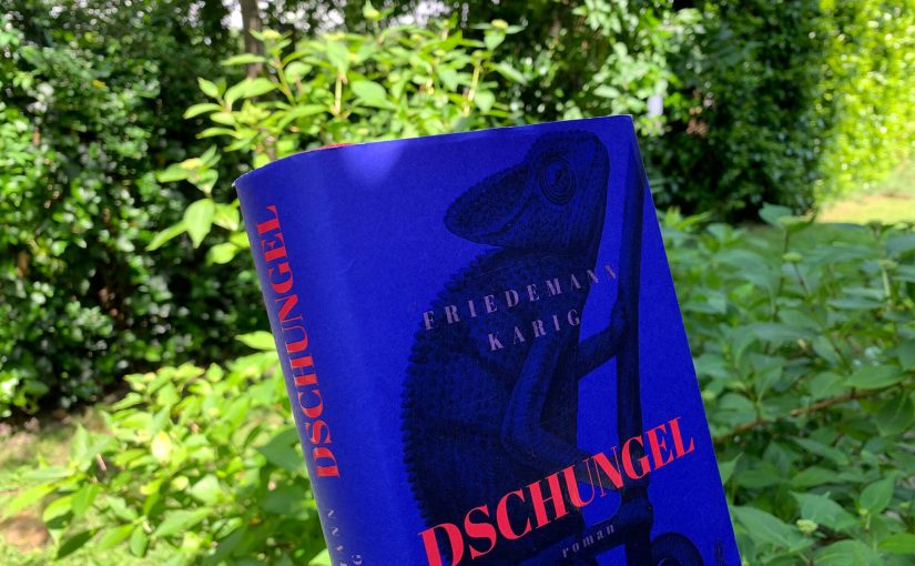 """Bücher in 3 Sätzen: """"Dschungel"""" von Friedemann Karig"""